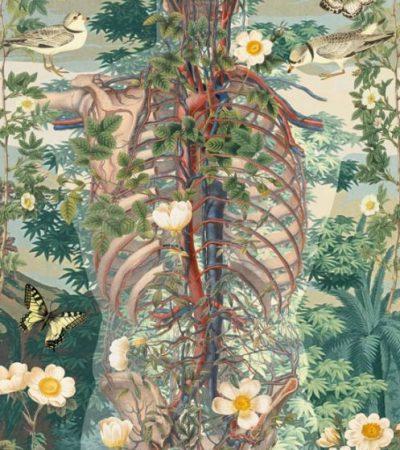 corpo-umano-e-natura-66-400x450